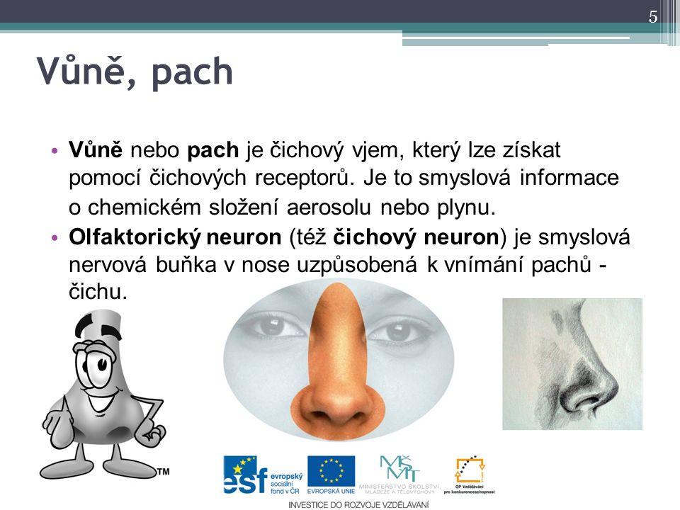 Vůně, pach Vůně nebo pach je čichový vjem, který lze získat pomocí čichových receptorů. Je to smyslová informace.