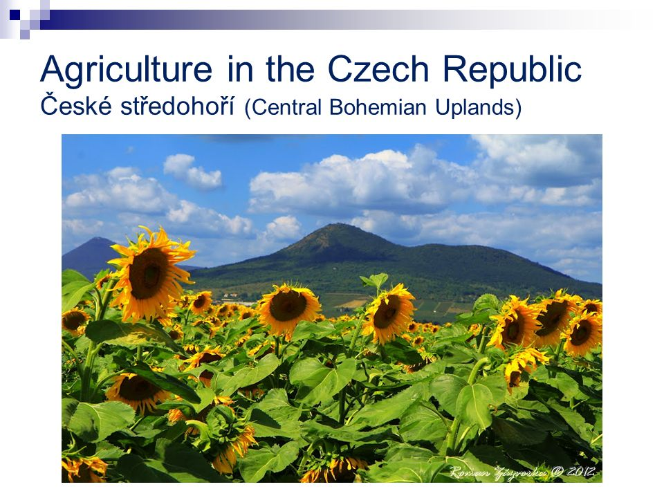 Agriculture in the Czech Republic České středohoří (Central Bohemian Uplands)