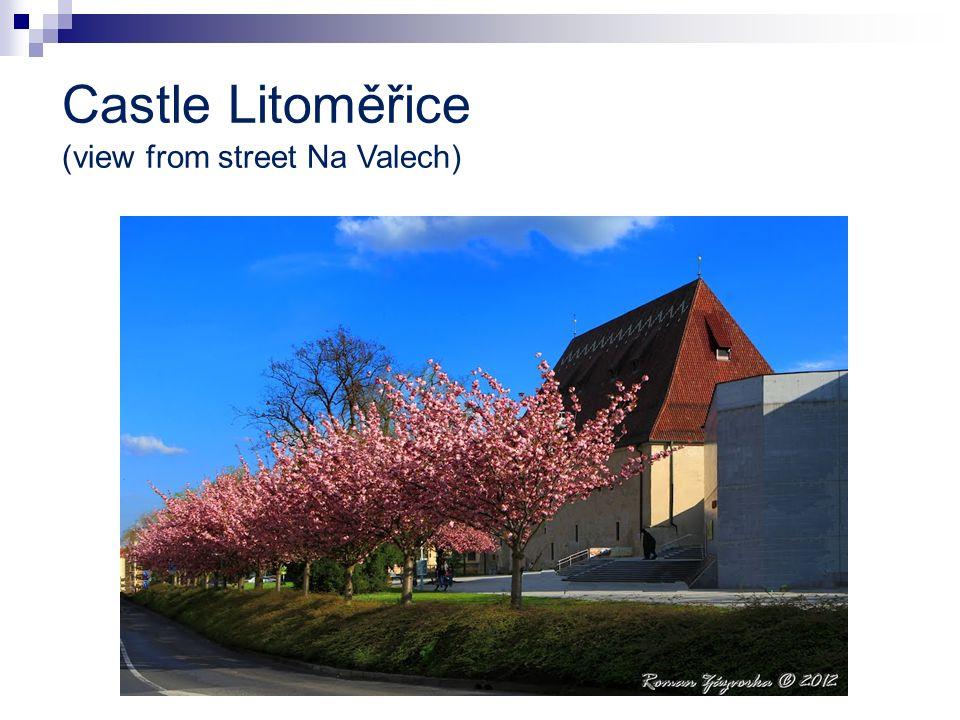 Castle Litoměřice (view from street Na Valech)