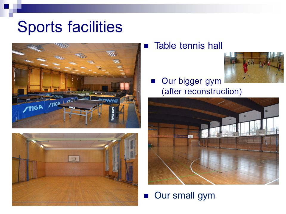 Sports facilities Table tennis hall Our small gym