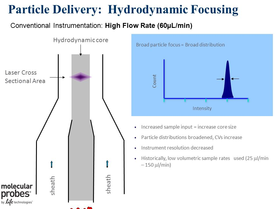 Particle Delivery: Hydrodynamic Focusing