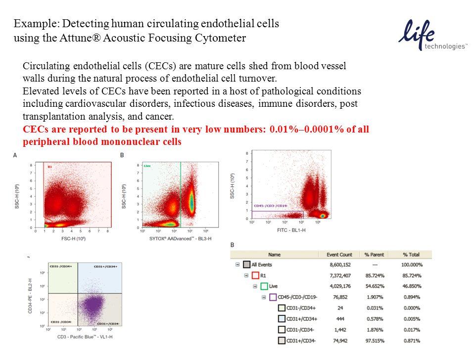 Example: Detecting human circulating endothelial cells