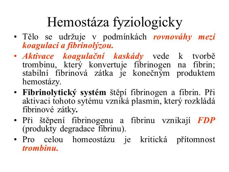 Hemostáza fyziologicky