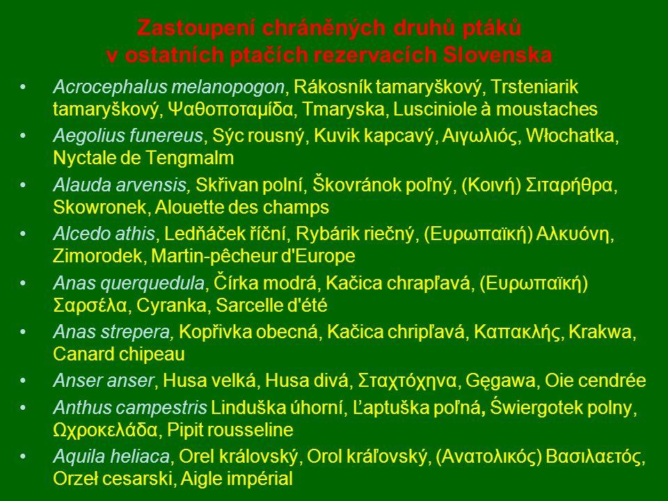 Zastoupení chráněných druhů ptáků v ostatních ptačích rezervacích Slovenska