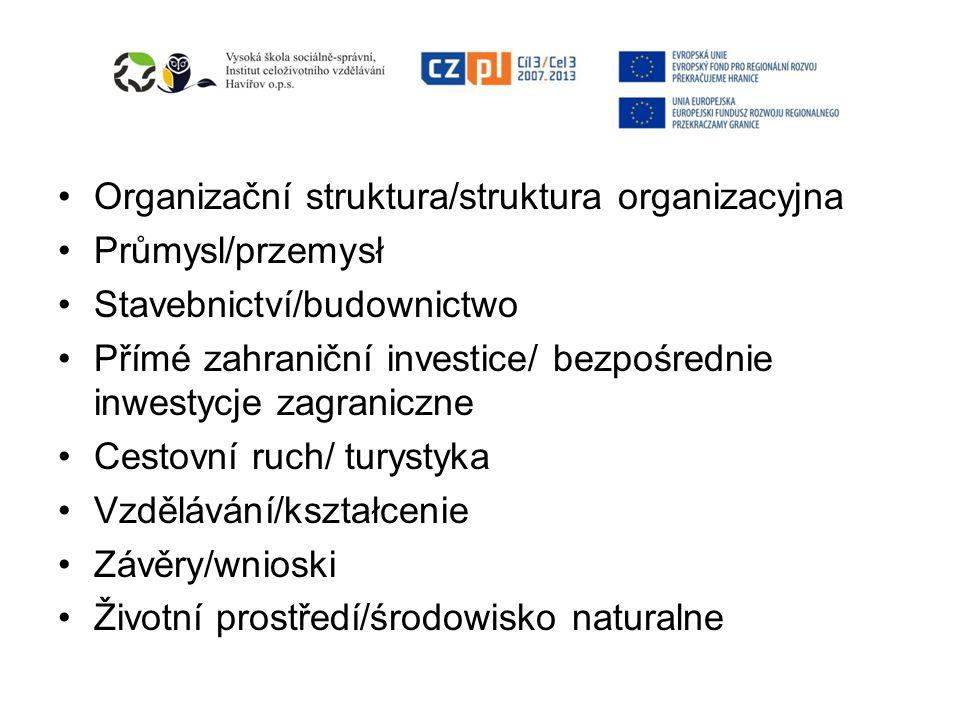 Organizační struktura/struktura organizacyjna