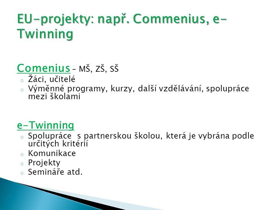 EU-projekty: např. Commenius, e-Twinning