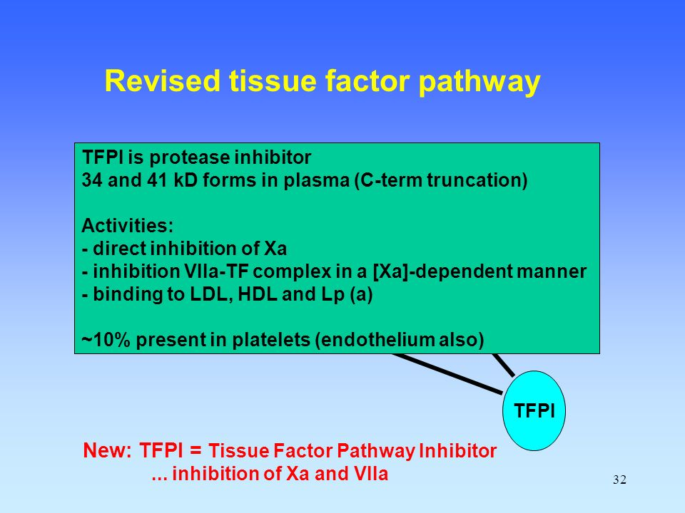 Revised tissue factor pathway