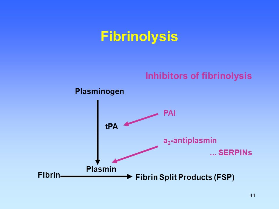 Inhibitors of fibrinolysis