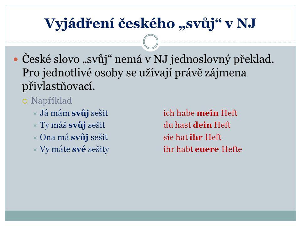 """Vyjádření českého """"svůj v NJ"""
