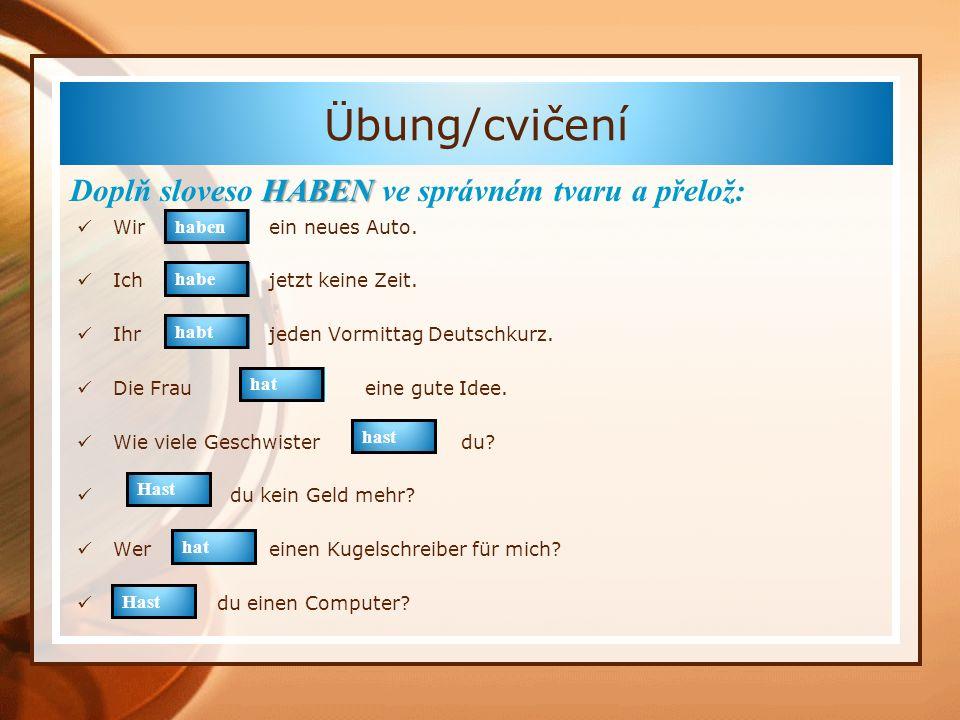 Übung/cvičení Doplň sloveso HABEN ve správném tvaru a přelož: