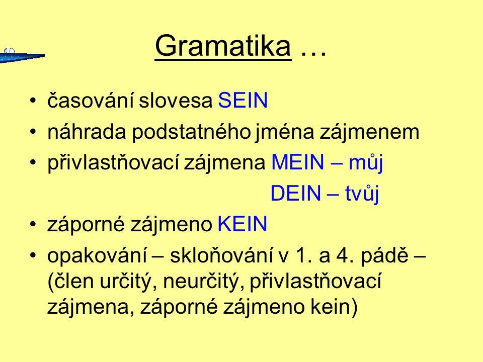 Gramatika … časování slovesa SEIN náhrada podstatného jména zájmenem