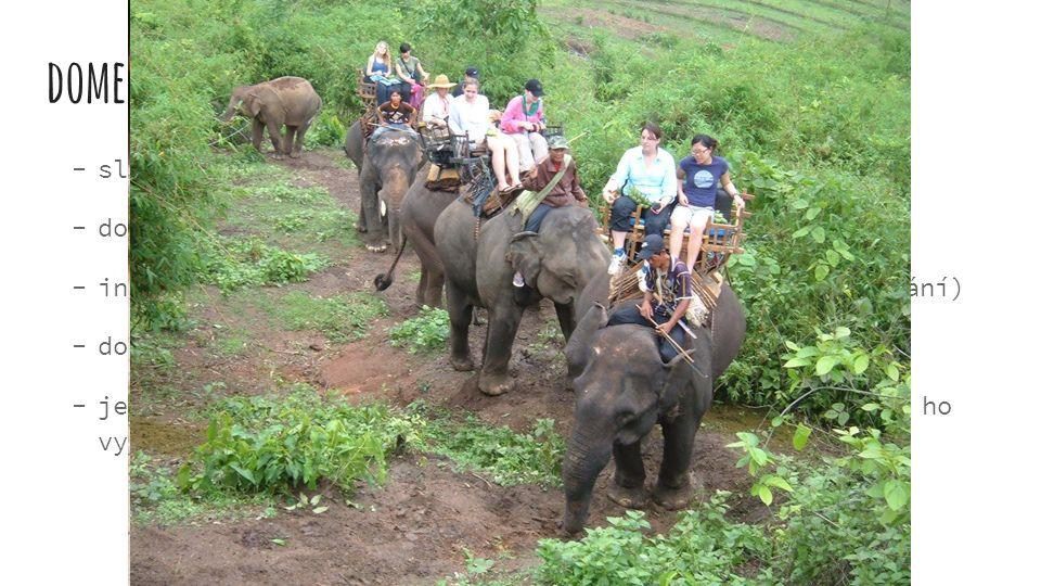 domestikace sloni byli a jsou využíváni k různým účelům