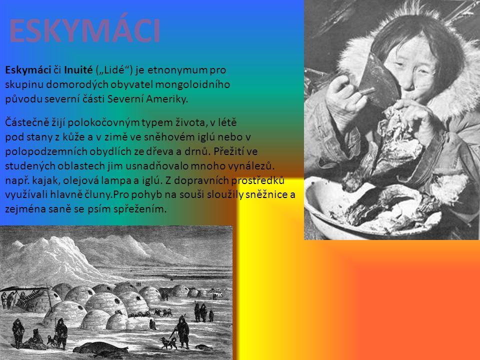 """ESKYMÁCI Eskymáci či Inuité (""""Lidé ) je etnonymum pro skupinu domorodých obyvatel mongoloidního původu severní části Severní Ameriky."""