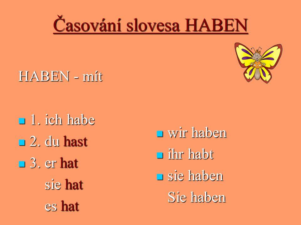 Časování slovesa HABEN