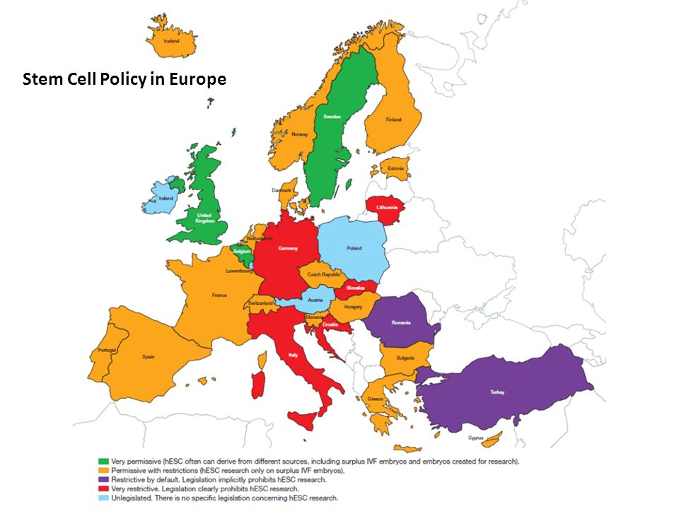 Stem Cell Policy in Europe