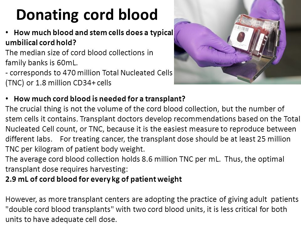 Donating cord blood How much blood and stem cells does a typical umbilical cord hold