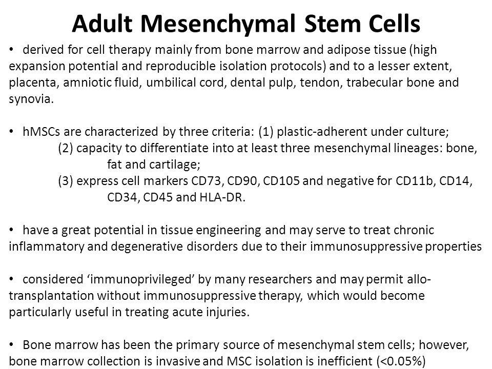Adult Mesenchymal Stem Cells