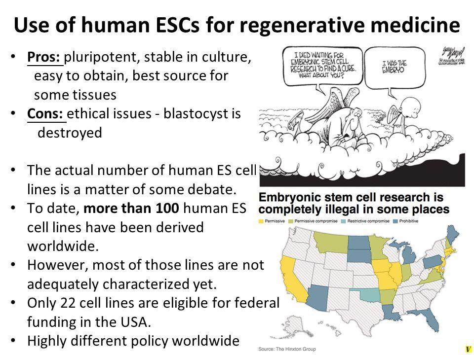 Use of human ESCs for regenerative medicine
