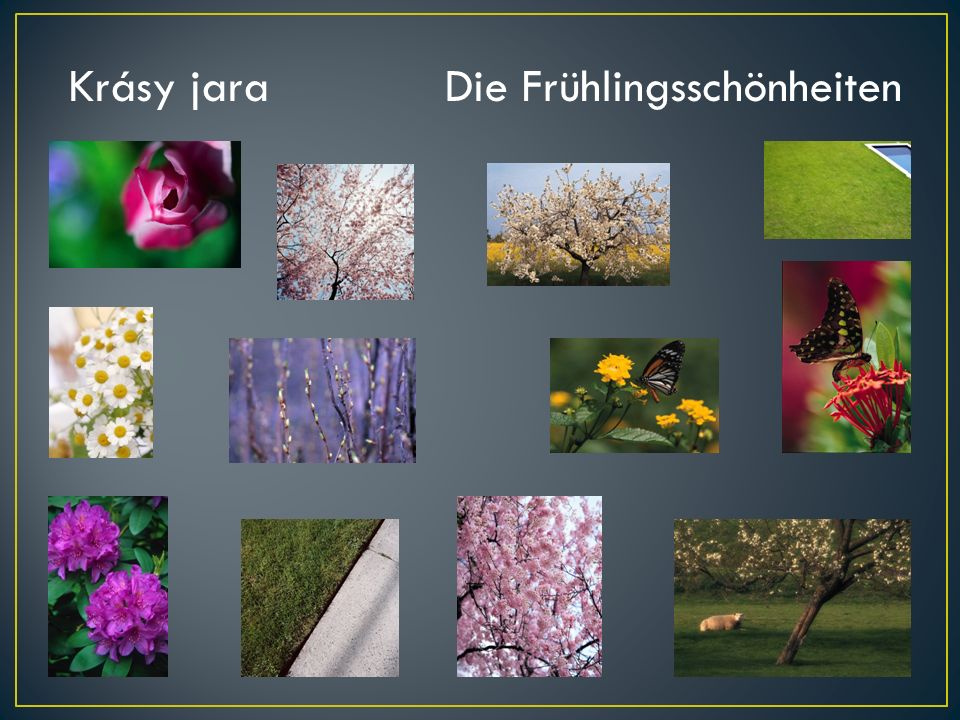 Krásy jara Die Frühlingsschönheiten