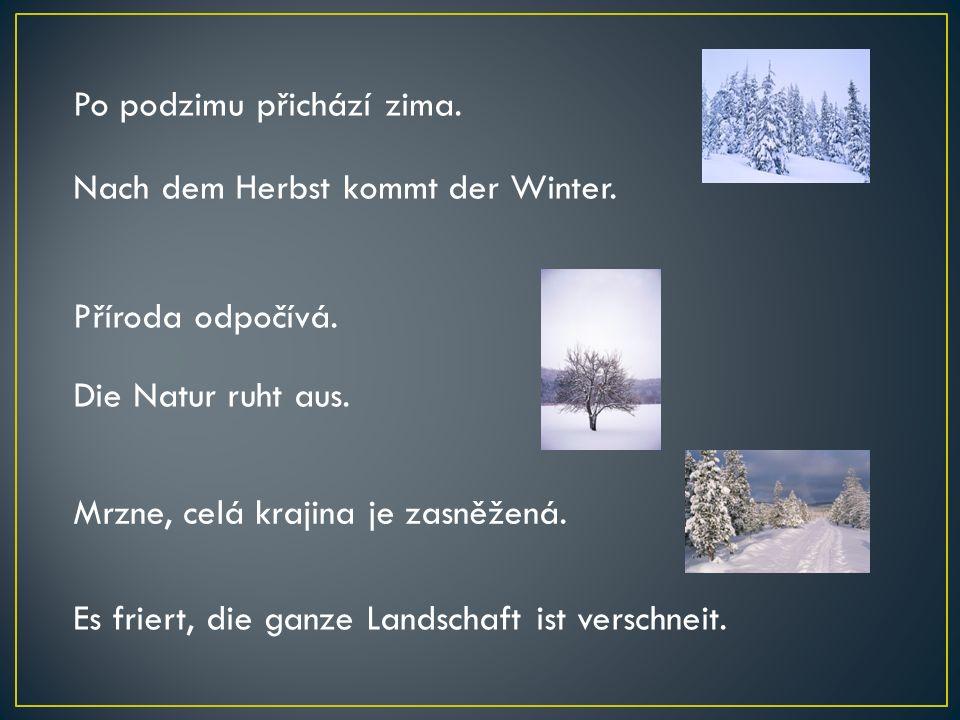 Po podzimu přichází zima.