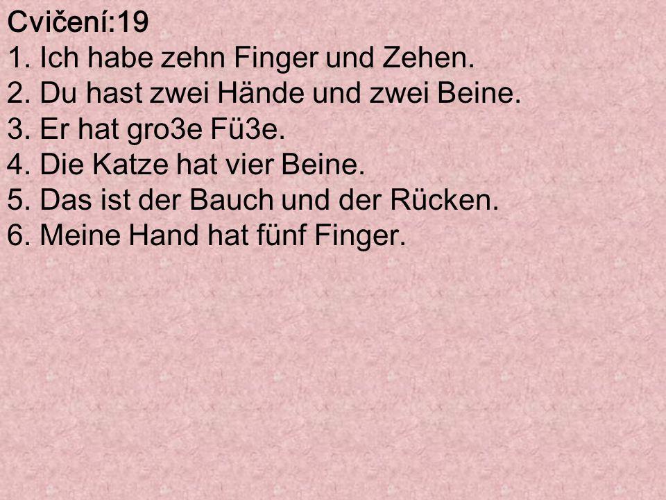 Cvičení:19 1. Ich habe zehn Finger und Zehen. 2. Du hast zwei Hände und zwei Beine. 3. Er hat gro3e Fü3e.