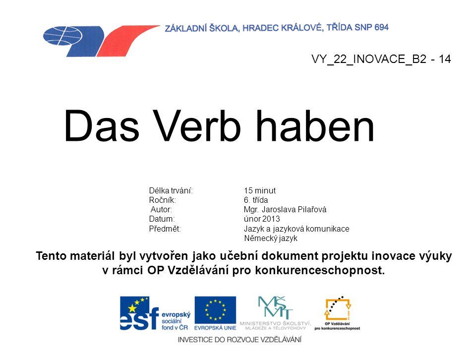 Das Verb haben VY_22_INOVACE_B2 - 14