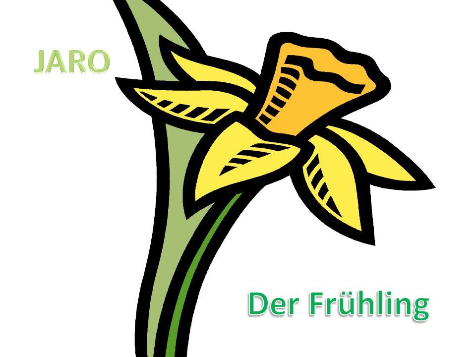 JARO Der Frühling