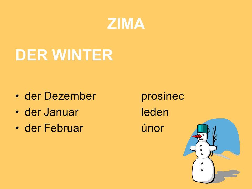 ZIMA DER WINTER der Dezember prosinec der Januar leden