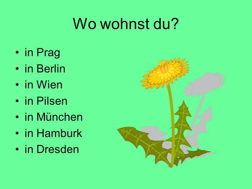 Wo wohnst du in Prag in Berlin in Wien in Pilsen in München