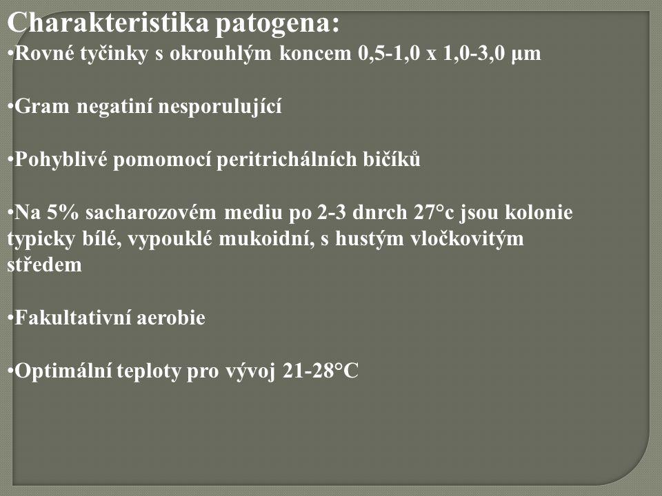 Charakteristika patogena: