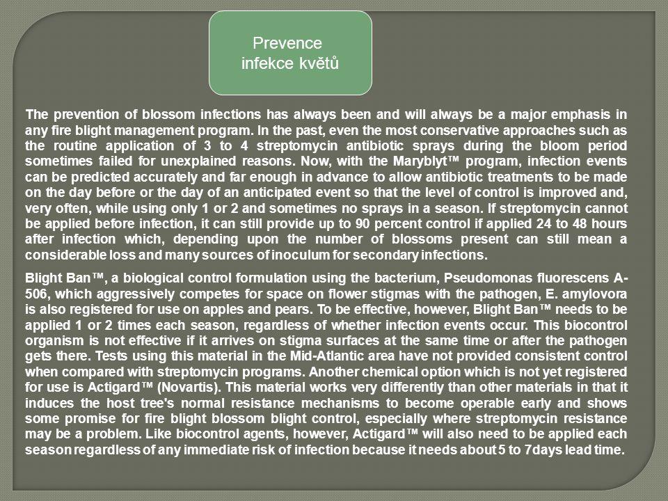Prevence infekce květů