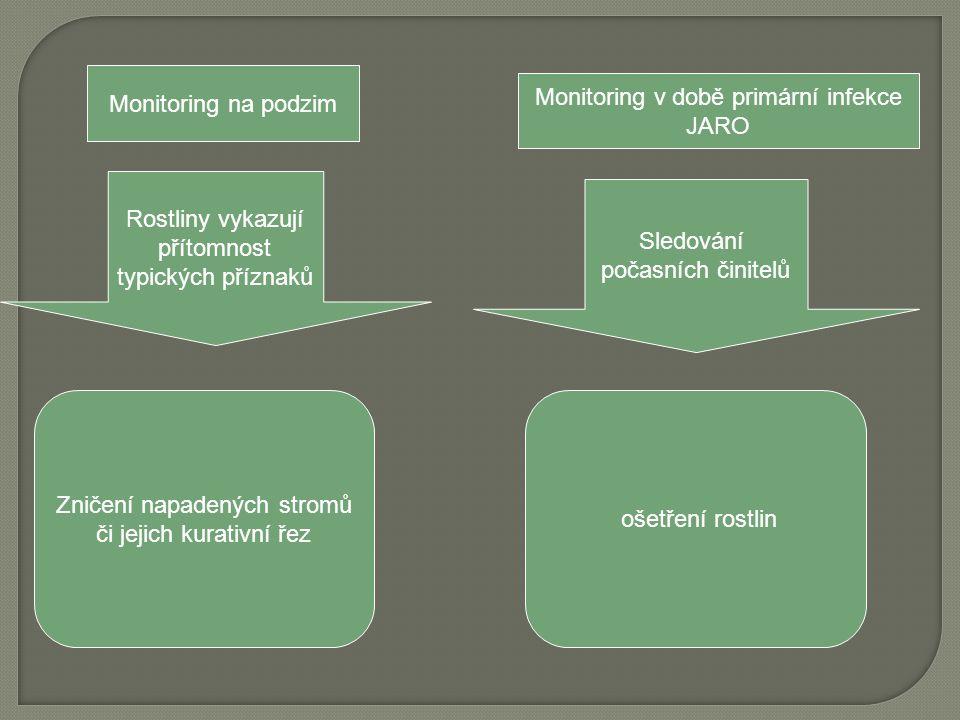 Monitoring v době primární infekce JARO