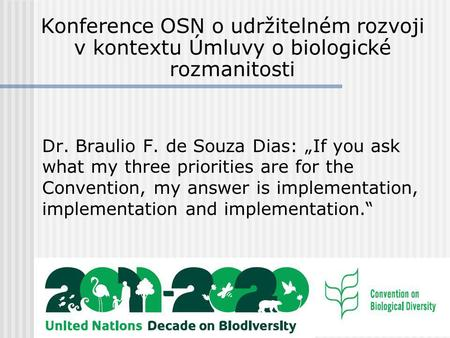 "Dr. Braulio F. de Souza Dias: ""If you ask what my three priorities are for the Convention, my answer is implementation, implementation and implementation."""