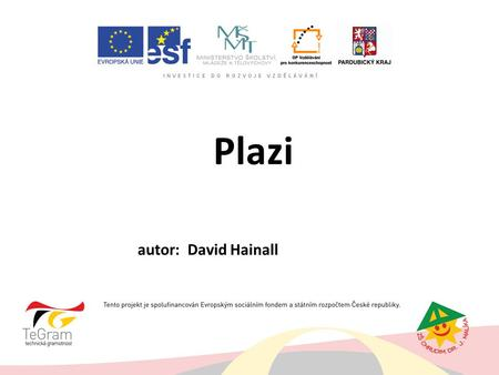 Plazi autor: David Hainall.
