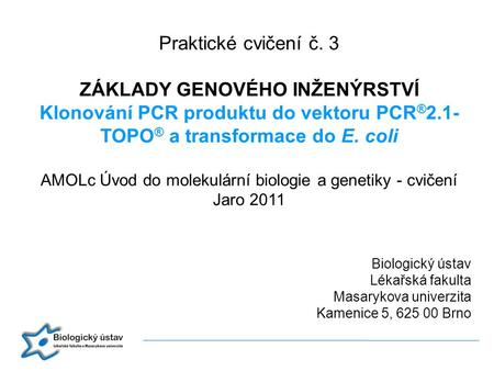 Praktické cvičení č. 3 ZÁKLADY GENOVÉHO INŽENÝRSTVÍ Klonování PCR produktu do vektoru PCR®2.1-TOPO® a transformace do E. coli AMOLc Úvod do molekulární.