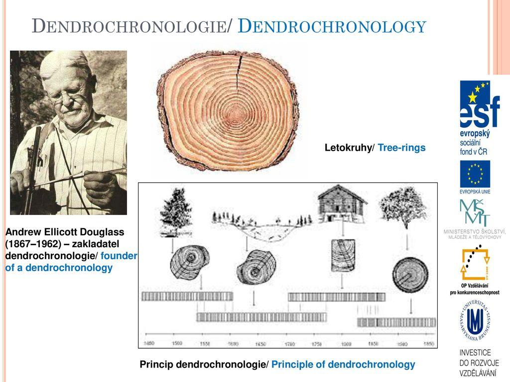 ako sa dendrochronology datovania práce