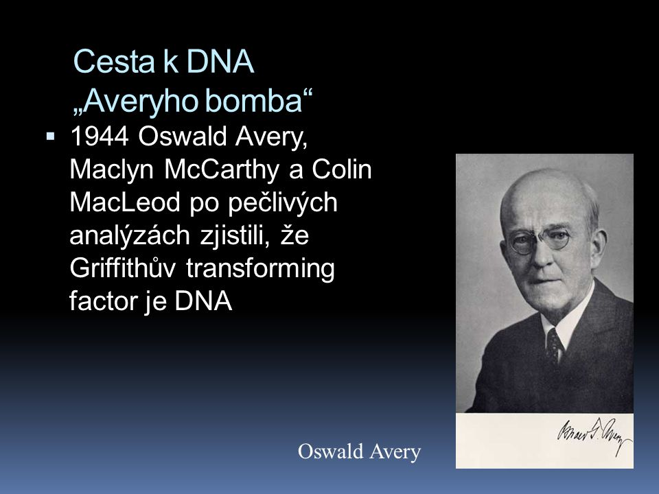 "Cesta k DNA ""Averyho bomba"