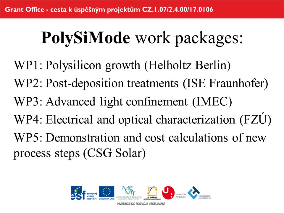 PolySiMode work packages: