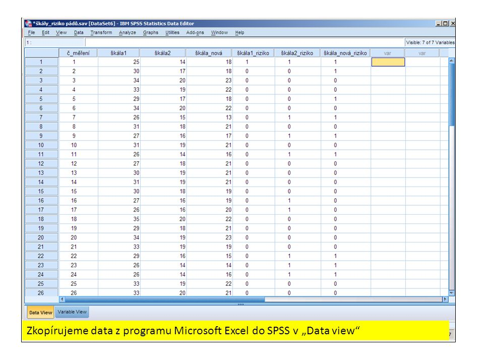 "Zkopírujeme data z programu Microsoft Excel do SPSS v ""Data view"