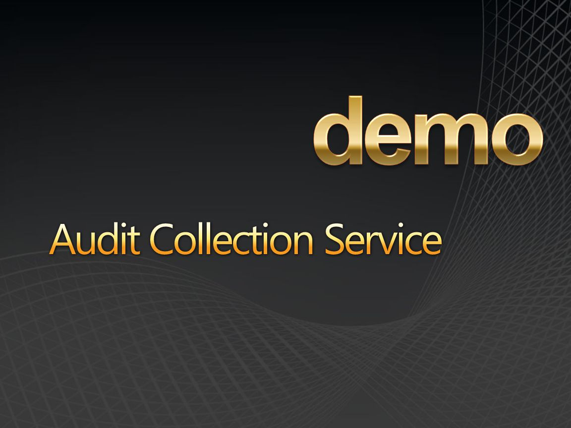 demo Audit Collection Service