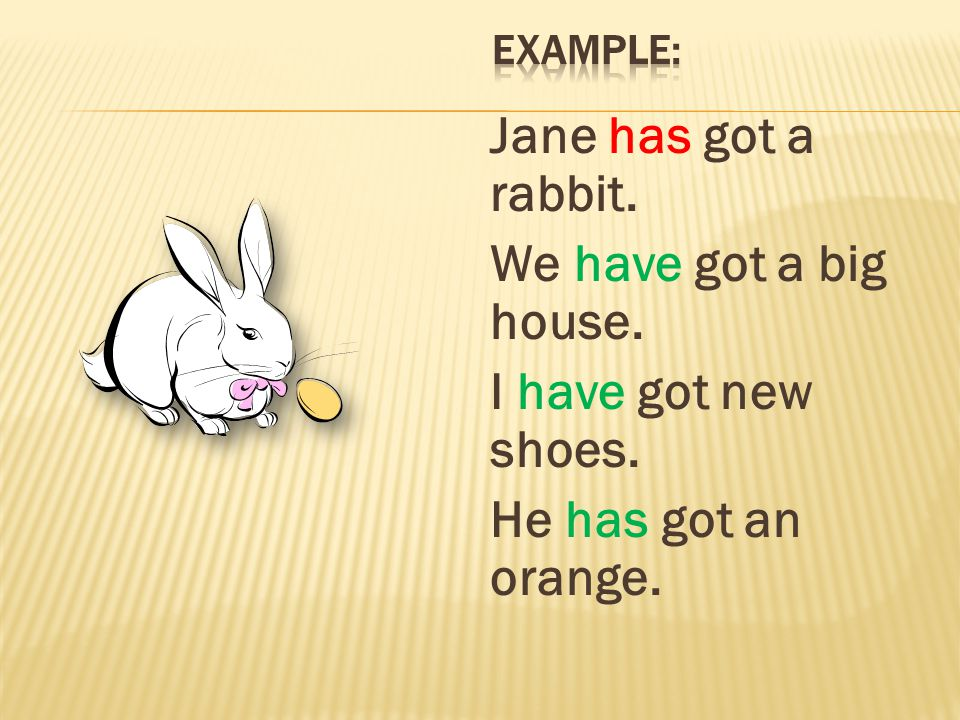 Example: Jane has got a rabbit. We have got a big house.