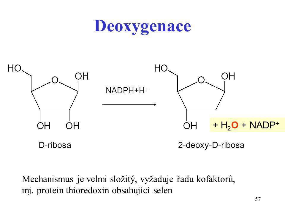Deoxygenace + H2O + NADP+