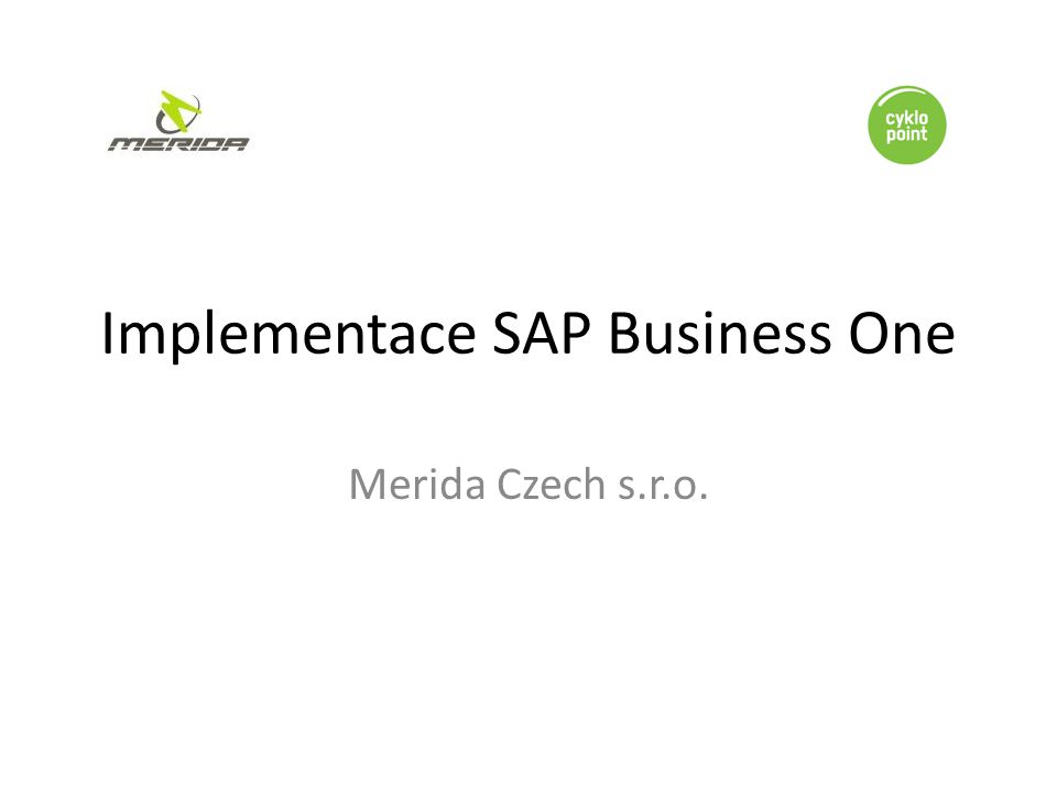 Implementace SAP Business One