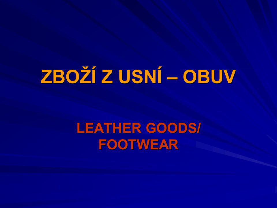 LEATHER GOODS/ FOOTWEAR