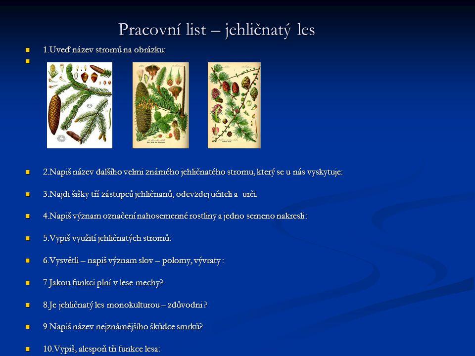 Pracovni List Rybnik 1 Ktere Rostliny Rostou Na Melcinach Rybniku
