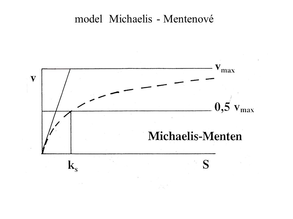 model Michaelis - Mentenové