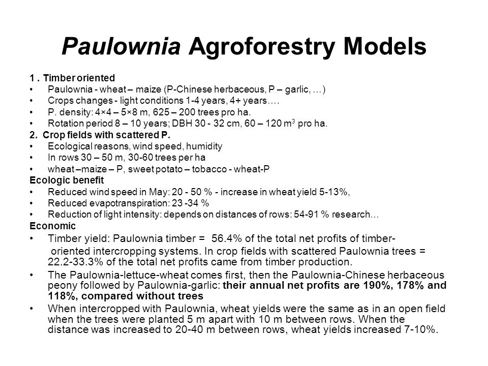 Paulownia Agroforestry Models