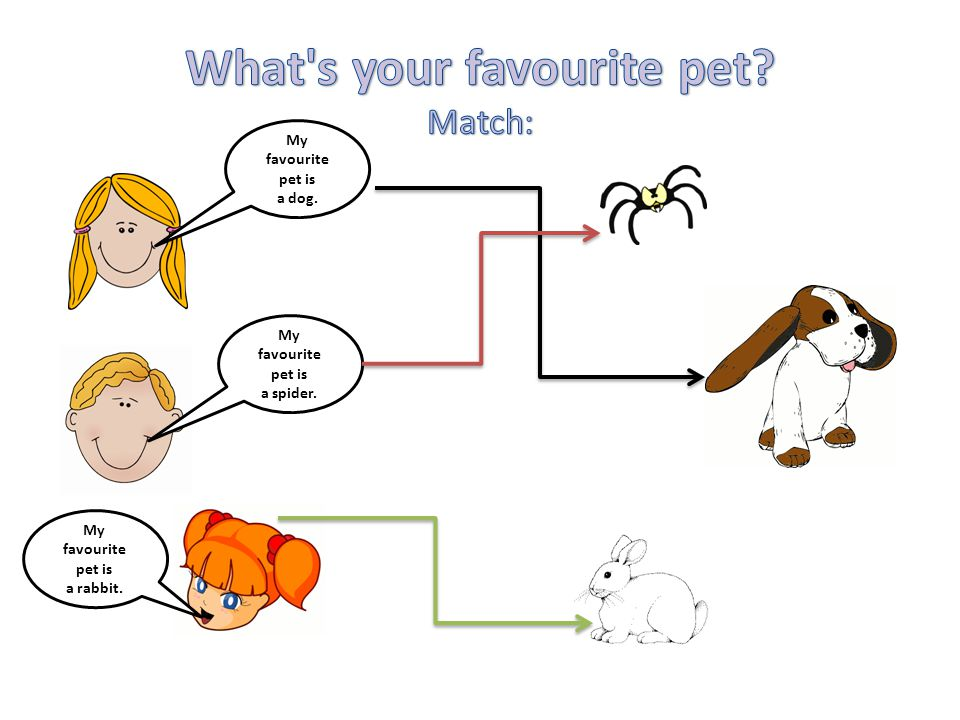 What s your favourite pet Match: