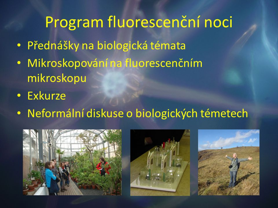 Program fluorescenční noci