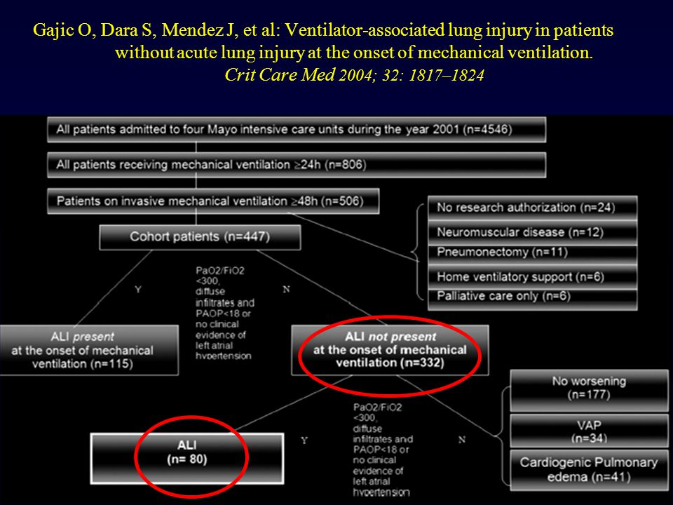 Gajic O, Dara S, Mendez J, et al: Ventilator-associated lung injury in patients without acute lung injury at the onset of mechanical ventilation. Crit Care Med 2004; 32: 1817–1824